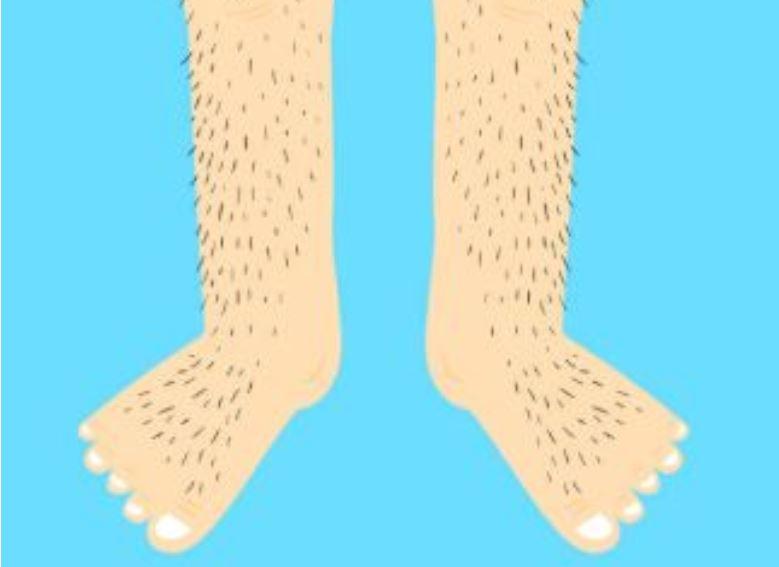 Chlupaté nohy